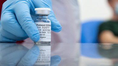 Foto de SAÚDE. Projeto de senador torna crime omitir-se à imunização e propagar notícias falsas sobre vacina