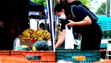 Foto de CIDADE. Três feiras da cidade estão com realização confirmada nesta semana. Confira datas e os locais