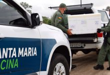 Foto de VACINA. Prefeitura recebe remessa destinada à aplicação da segunda dose contra Covid em idosos